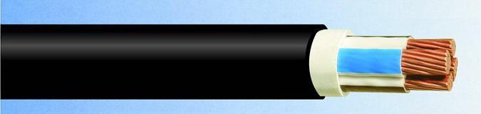 Силовой кабель ВВГ 1х25