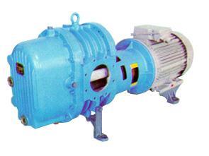 Газодуходувка  1Г32-306В