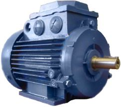 Электродвигатель 5А200М2