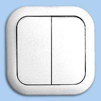 Выключатель двухклавишный С56-124