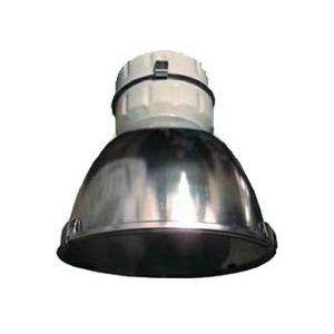 Светильник ЖСП 99-400-122 IP65