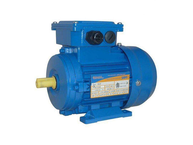 Электродвигатель 5АИ 100 S2 ЖУ2 (2081)