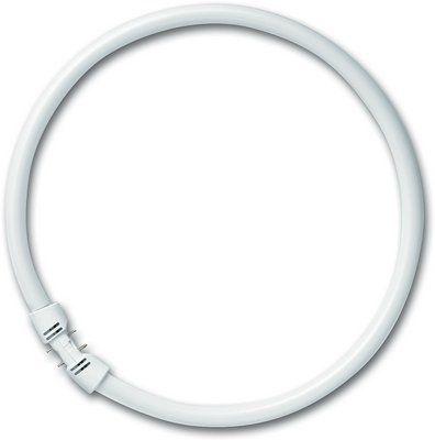 FC 55/ 830 2GX13 300mm (тёплый белый 3000K) - лампа Osram 4050300528601