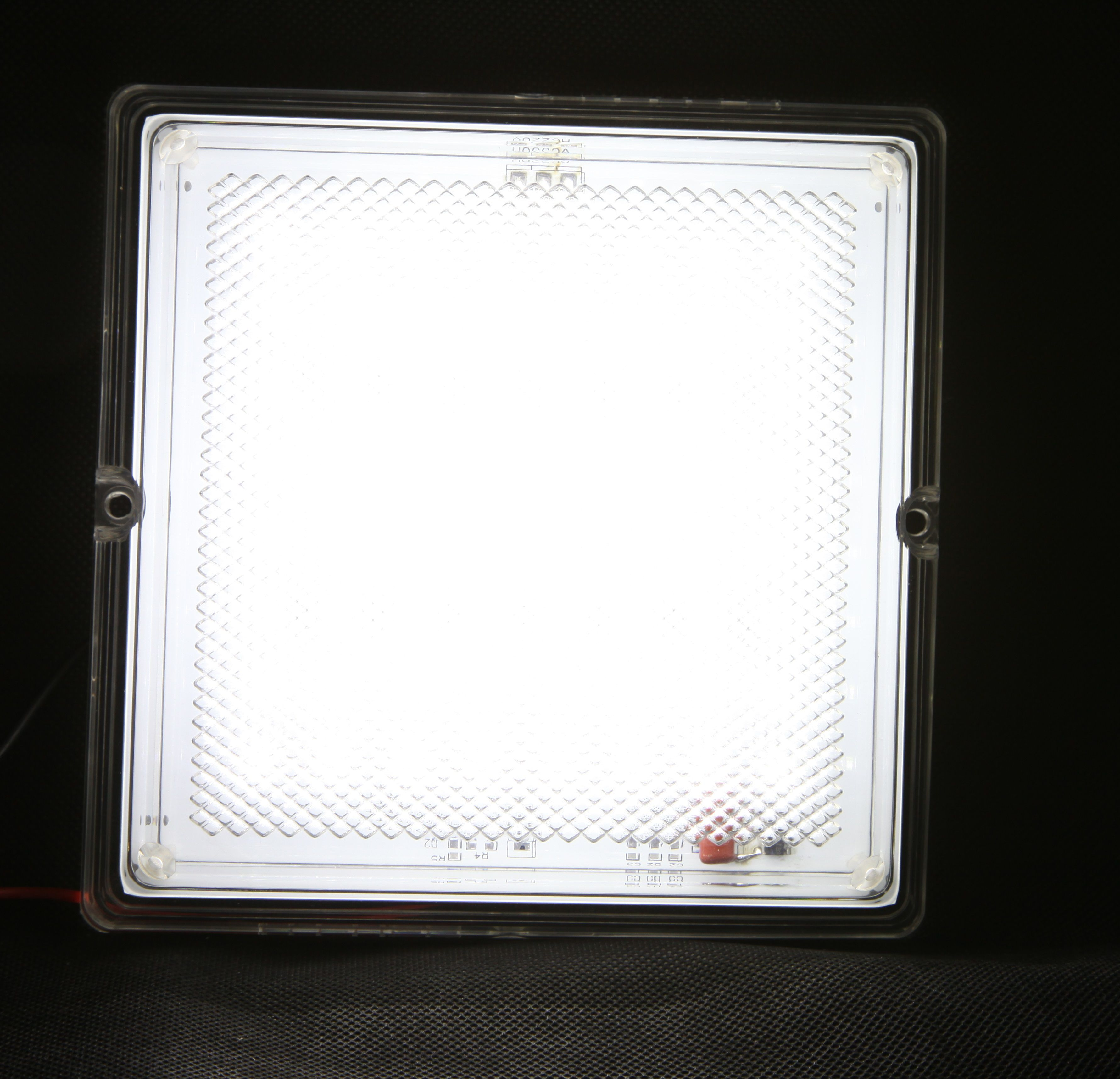 Светильник светодиодный Quadro: WS 220V
