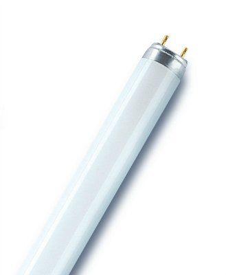 Лампа люминесцентная L18W/ 840 PLUS ECO G13 d26х590мм 4000K OSRAM