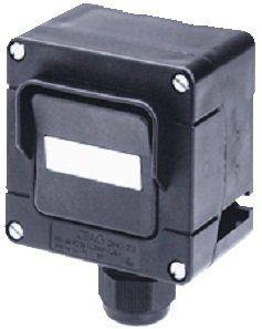Взрывозащищенный клавишный выключатель (кнопка с возвратом) GHG 273 4000 R0004