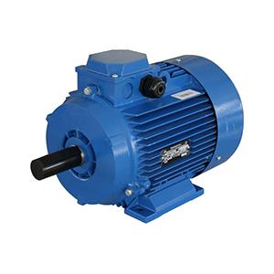 Электродвигатель АДМ100L8У2 IM1081
