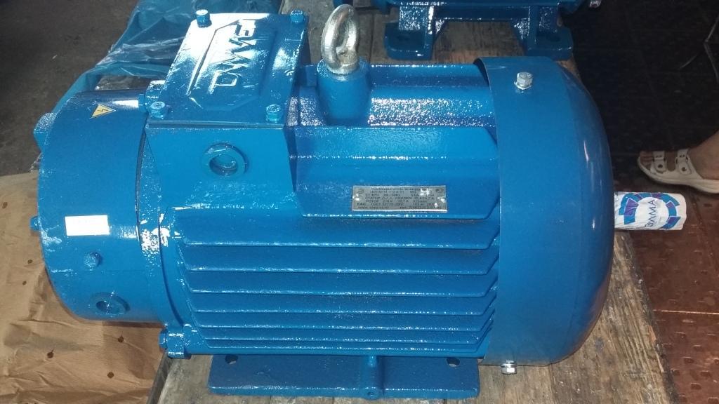 Электродвигатель 4МТКН 200LB8 У1 IM1003