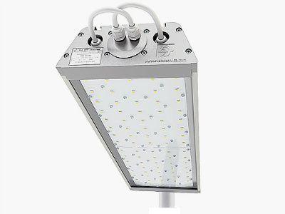 Уличный светодиодный светильник ДиУC-80