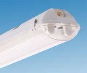 Светильник пылевлагозащищенный ЛСП44-2х14-011 Flagman HF